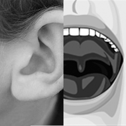 onchi_ear-and-throat