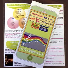 singer_guide_leaflet