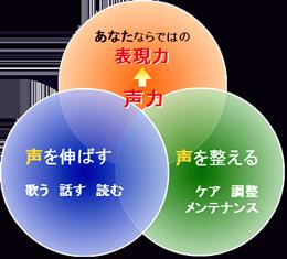 voice-training's-field