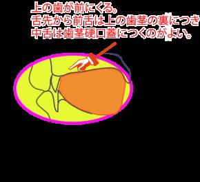 正常な舌の状態