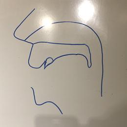 口腔断面図の描き方05