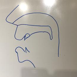 口腔断面図の描き方06