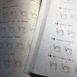 口腔断面図の種類