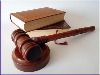 hammer-法律